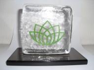 Trofeus de vidro CBCS