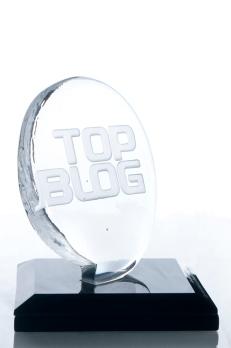 Trofeu de cristal TOP Blog por Elvira Schuartz - Espaço Zero